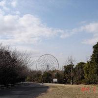 葛西臨海公園でバードウォッチング [2011](1)
