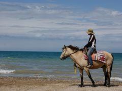 たまにはいいでしょ。一人旅行 -北京-西寧-青海湖-西安-黄龍-九塞溝-北京