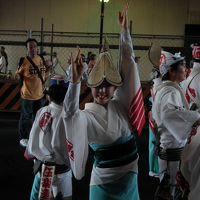 2011年8月28日高円寺阿波踊り