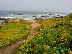 サンフランシスコから西海岸ドライブと温泉の旅(2011年8月)。。。その2「パシフィカからサングレゴリオ州立海浜公園」