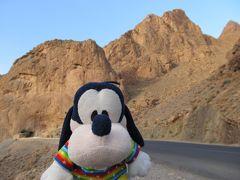 グーちゃん、モロッコへ行く!(ズイズ渓谷で野人バーゴンを見た!編)