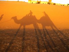 グーちゃん、モロッコへ行く!(サハラ砂漠の日の出前編)