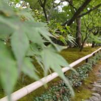 夏の京都(編集中)