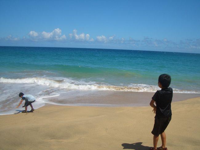 小学3年生と5年生の息子2人と私と母、4人でカウアイ島を旅行したアルバムです。<br />カウアイ島は去年に続き、2回目の滞在。「海で泳ぎたい」「馬に乗りたい」という子供たちの希望を旅のテーマにしました。