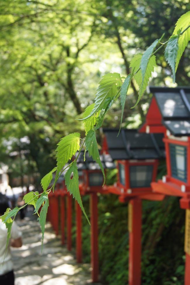 本日の最高気温 32度<br /><br />水面の真上に作られた川床は、蒸し暑い京都盆地より5度〜10度も涼しいそうです。<br />そんな清流と緑に囲まれ、友人と楽しくお食事し、贅沢な時間を過ごしてきました。<br /><br /><br />なんとな〜〜く作ってみたくなったので、ここで一首!<br />『川床の 川音に耳を かたむけて 涼を感じて 夏を味わう』<br /><br />仲よしHP:http://www.kibune-nakayoshi.co.jp/<br /><br /><br /><br />