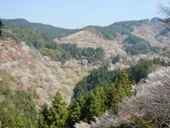 吉野千本桜、高野山、熊野三山&古道を見るなら、このツアーがお得!!!