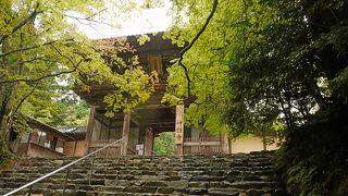 【国内69】2011.8京都出張とんぼがえり1-悠悠亭,東急ホテル,神護寺