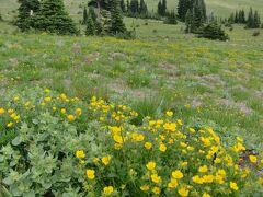 シアトルと周辺の国立公園を訪問06:マウントレニエ国立公園 サンライズ