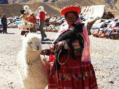 ペルー紀行(7) ティティカカ湖畔のまちプーノへの道~青と黄色の高原の世界を行く