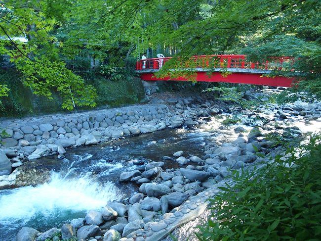旅の1日目後半(2011/9/19~9/20)。<br /><br />1日目の後半は、伊豆長岡から修善寺温泉に移動し、温泉街をきままにそぞろ歩きすることに。<br />鎌倉時代に悲哀の歴史の舞台となった修禅寺や、桂川を挟み緑溢れる竹林の小径など、散歩するにはとても美しく情緒ある温泉街でした。<br /><br />〔1日目後半行程〕<br />・修善寺駅~修善寺温泉(とっこの湯公園~源頼家の墓~十三士の墓~指月殿~修善寺ハリストス正教会~日枝神社~修禅寺~独鈷の湯~竹林の小径~源範頼の墓~赤蛙公園)~泊<br /><br />〔1日目前半の旅行記〕<br />http://4travel.jp/traveler/akaitsubasa/album/10603639/<br /><br />〔2日目の旅行記〕<br />http://4travel.jp/traveler/akaitsubasa/album/10605156/