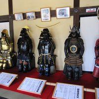 掛川の旅①(掛川城とキウイフルーツカントリー)