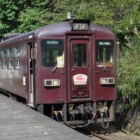 2011年9月 22年ぶりのわたらせ渓谷鐵道
