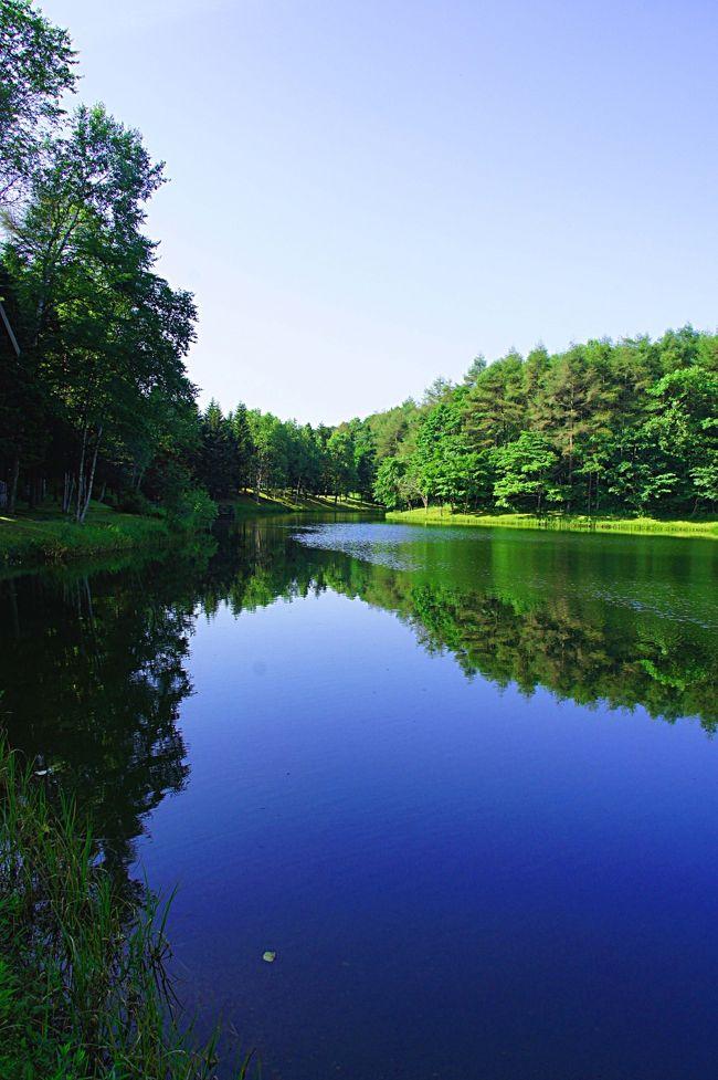 3泊4日の北海道旅行も最後の朝を迎えました。<br /><br />ここニドムを知ったのは旅行のパンフレットやガイドブックなどで、朝もやの中に幻想的に佇むお洒落な湖畔のコテージの写真を見たことがきっかけでした。まるで「これは北欧の針葉樹の森と湖ではないか」と思わせる風景を見て、日本にもこんな所があるのかと思い行ってみたいと思うようになりました。<br /><br />ある時、職場で札幌勤務の経験がある同僚と話していたところ、その同僚が結婚式を挙げたのがここニドムだったことを知り、とてもよかったとすすめられたこともあってここにやって来ました。<br /><br />あの旅行パンフレットにあるような朝もやの綺麗な景色を見てみたくて、この日は朝5時前に起床。池の周囲を1周する早朝散歩に出かけてみました。