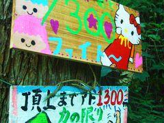 山はかわいい美術館   日野山(越前富士)に登る