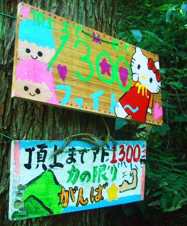 ご訪問をありがとうございます。<br /><br />北陸自動車道を走っての帰り道に見える、富士山に似た美しい山が以前から気になっていました。<br />武生インターを越えると、真正面に見えてくる山です。<br />調べてみると、日野山(越前富士)だとわかりました。<br />名前がわかると、とたんに登りたくなってしまいました。<br /><br />4トラで下調べをすると、koikeiさんが登っておられることがわかり、<br />さっそく登山道や駐車場などについて尋ねてみたところ、これ以上ないくらいに詳しく教えて下さいました。<br />ありがたいことに案内も買って出て下さったのですが、あいにく平日に登る予定だったので、お仕事のあるkoikeiさんとご一緒することは叶いませんでした。<br />残念。<br />でも当日koikeiさんに、ちょっとだけ会えました。<br />嬉しかった〜。<br /><br />山では予想もしない物によく出逢います。<br />この山にも、楽しい物がいっぱいありました。<br />山道は単調ですが、とても楽しませてもらえました♪<br /><br /><br />日野山  <br />標高  794.5m<br />累積標高差 745m<br />歩行距離 約5.5km<br />コース 荒谷コース<br /><br />2011年登山記録<br /><br />1/15 繖山<br />1/29 綿向山<br />2/3 音羽山<br />2/8 飯道山・庚申山<br />2/19 雪野山・鏡山<br />2/27 水井山・横高山<br />3/27 姫越山 <br />4/12 ホッケ山・権現山 <br />4/16 御池岳 <br />5/17 堂満岳<br />5/26 百里ヶ岳<br />6/2 多田ヶ岳(敗退)<br />6/12 三十三間山<br />6/22 白山(途中まで)<br />7/3 鳥海山<br />7/18 白山<br />8/3〜8/4立山<br />8/25〜8/26富士山<br />9/10荒島岳<br /><br /><br />