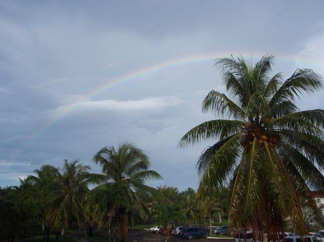 台風の発生の多いこの時期に、夫がどうしても行きたいと申しまして、ロタに行くことにしました。<br />目的は、ダイビング。<br /><br />ロタホールの光が差すのを見たいのですが・・・<br /><br />天気予報の衛星画像を見ても、大きな厚い雲がミクロネシアの付近にあります・・・<br /><br />でももしかして、天気がいいかもしれない。<br />海況も良いかも・・・と楽天的に考えながら、行ってきます。<br /><br /><br />この旅行記では、おもにホテルの紹介をします。