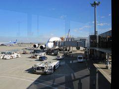 シンガポール航空 A380で行く インド・シンガポール一人出張珍道中 (Day 1)