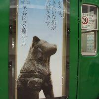 帰らぬ主人を十余年渋谷駅に待ち続けたハチ公像、ハチ公散策の巻