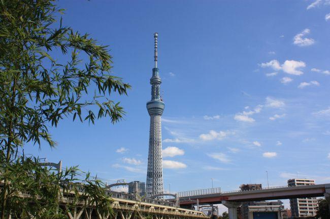 所用で東京に。約4年ぶり。<br />話題のスカイツリーを見に行くが、近くで見ることもないと思い、浅草観光を兼ねて、浅草から眺めることに。<br /><br />その後、渋谷で2泊。