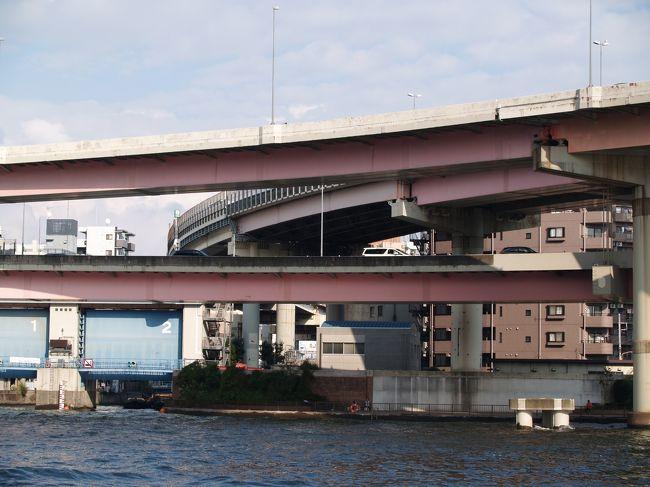 新大橋と両国橋との間の隅田川上には首都高速道路の両国ジャンクションがある。橋梁部分は「両国大橋」と呼ばれる。<br /> 箱崎ICから隅田川右岸を北上してきた首都高速が隅田川を渡り、隅田川左岸をさらに北上する高速6号向島線と東行する高速7号小松川線とに分岐している。したがって、隅田川上に架かる高架橋の上で立体交差した2階建ての高架橋である。人が渡らない自動車専用の高架橋とはいえ、高々200mもない隅田川を何の苦もなく、カーブしながら架かっている。<br /> 赤系の塗装色はかなり退色してしまってはいるが、隅田川上に美しい曲線を描いている。隣に架かる両国橋に対して「両国大橋」と呼ばれている理由が理解できる。<br />(表紙写真は両国ジャンクション(高架橋))