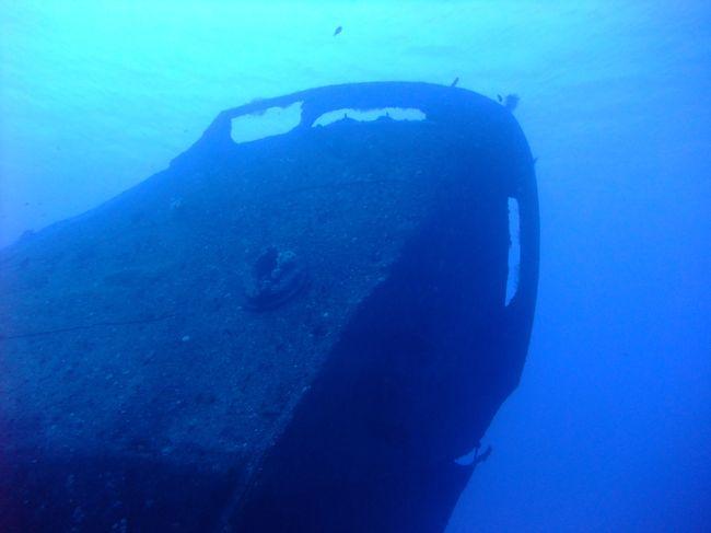 青い海でのんびりダイビング。
