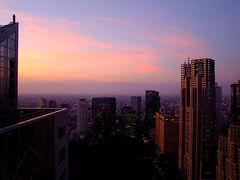 パークハイアット東京 東京西新宿ビル群と西東京を夕陽と共に眺められるラグジュアリーホテル