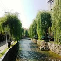 さすが ☆ 京都 ☆
