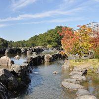 秋の散歩道 in 京都