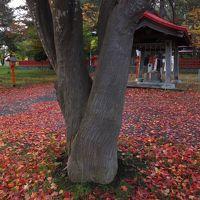 伏見神社(札幌)~地元の小さな神社です