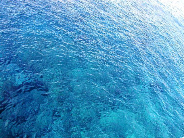 ハワイ旅行記2 ハワイ島・ヒロ, サウスポイント と キラウェア火山編