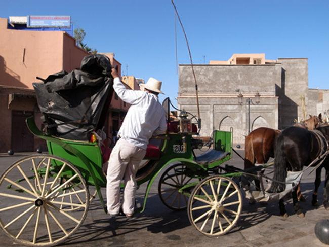 マラケシュ名物の馬車に乗って、マラケシュ市内にある名所を回ってきました。マラケシュと言えばまずはジャマ・エル・フナ広場のような混沌としたところが魅力ですが、12世紀以降のイスラム建築で、あんな立派なものができているなんて、まったくわかっていませんでした。北アフリカのイスラム王朝、侮るべからず、です。