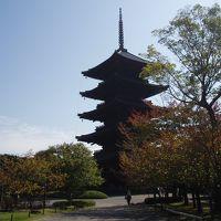 2011、秋 京都 1日目 仏像を見に行こう  東寺、大覚寺、清涼寺、グルメも♪