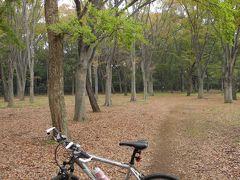 2011年11月 都立小金井公園に行ってきました。