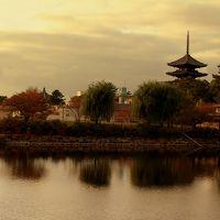 【ちょっと奈良まで…】 楽しいなぁ〜♪ � ならまち&秋の「正倉院展」奈良国立博物館