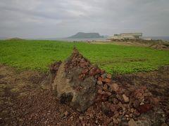 済州島到着1日目 2日目東南方面ミステリーツアーの観光
