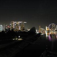 1泊3日の弾丸シンガポール海外出張(2011/11/10~12)