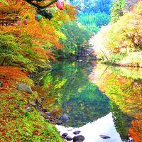 秋色の京都へ①~もみじ床でプチ贅沢&神護寺