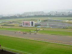 秋の東京競馬場♪ VIPサロンで優雅に競馬を楽しむ♪