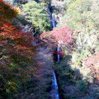 2011.11月 晩秋の一日、紅葉を見に行く。八百津~寂光院♪