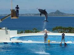 2011 癒しを求めて沖縄本島へ[3]