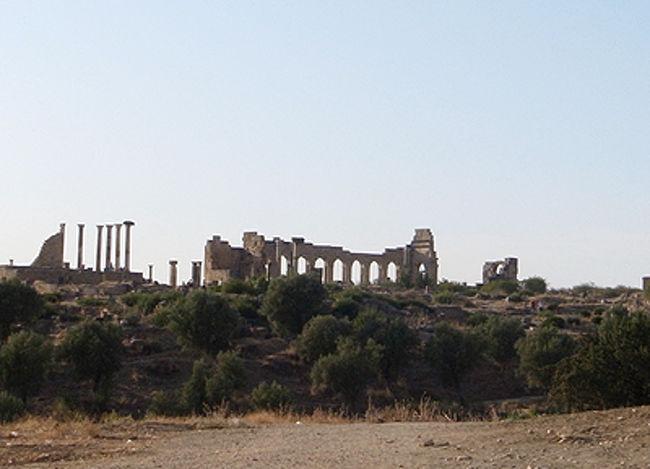 フェズから車で1時間半ほどの距離にあるローマ遺跡、ヴォルビリス。元々はカルタゴ人の街だったところに、古代ローマ人が都を築きました。モロッコにはいくつかのローマ遺跡がありますが、このヴォルビリスが唯一北アフリカでも指折りの保存状態のよさで、ユネスコの世界遺産に指定されています。<br />神殿や凱旋門、バシリカなど基本的なローマ都市の要素に加え、住宅の床モザイクが美しく残っているところがポイント。小規模ながら、往時のローマ都市の雰囲気を味わうことができます。<br />また何よりも、緑豊かな平原やオリーブの木がイタリアの田舎を思わせ、ローマ人たちはさぞかしこの土地が気に入っていたことだろう…と、感慨にひたることができるのです。<br />さらにそのすぐ近くに、モロッコにイスラムを開いた聖者ムーレイ・イドリスの都があります!