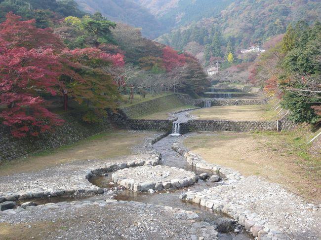 岐阜県の養老の滝に紅葉見物に行ってきました。<br />今年の紅葉はイマイチでした。