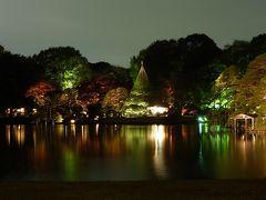 「紅葉と大名庭園のライトアップ」