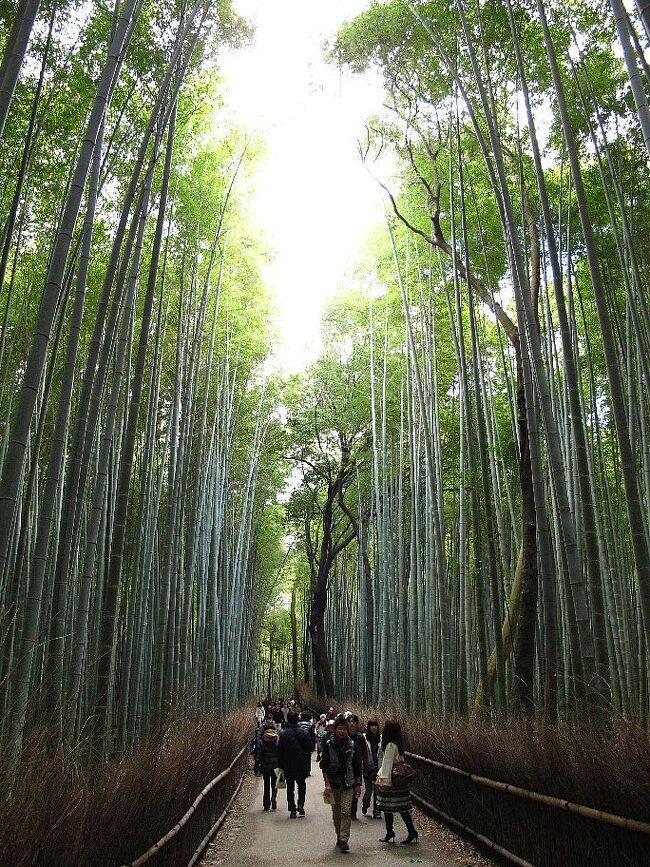 ◎京都の秋(1)嵯峨野、嵐山