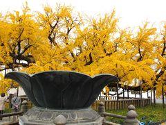 京都の秋(3)洛中