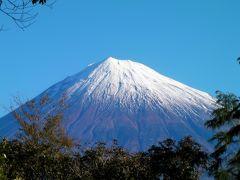 富士宮からの富士山 冬