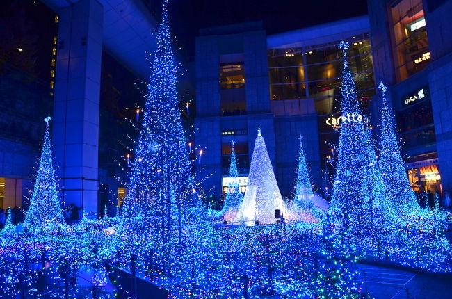 オープン以来、定番だったカレッタ汐留クリスマスイルミネーション ブルーオーシャン<br />今年は 海から森に変わって Blue Forest 『癒しの森』になりました。<br />来年1月9日までイルミネーションショーは開催されています。<br />今年の音楽プロデューサーはバイオリニストの高嶋ちさ子さん。<br />30分ごとに開催するショーでは、高嶋ちさ子さんが選曲した音楽に合わせて約25万球のLEDが様々な動きで輝きます。<br />東京のイルミネーションでは東京ミッドタウンと並ぶイルミの人気スポット。<br />年内で終わってしまう他のイルミと違って、ここは年明けまで楽しめます。