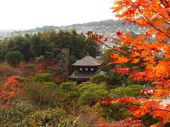 ギリギリセーフ、京都の紅葉 Part2