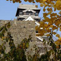 晩秋の水前寺公園と熊本城