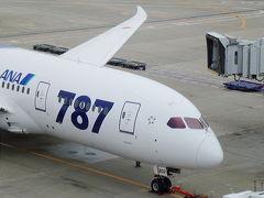 B787に乗りたい!! 憧れのB787初搭乗とANA SUITE LOUNGE利用記